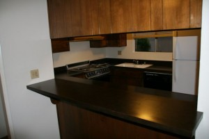 1390 B Kitchen